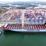 Cảng Cái Mép hạ 1.200ha trở thành trung tâm logistics lớn nhất Việt Nam